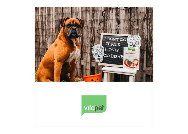 Halloween Vitapet