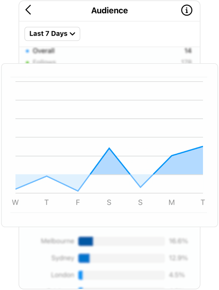 Screenshot of instagram audience insights with enlarged graph