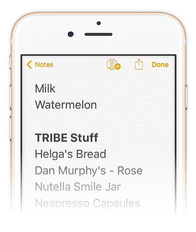 TRIBE Shopping List