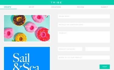 Create a Brief Screenshot