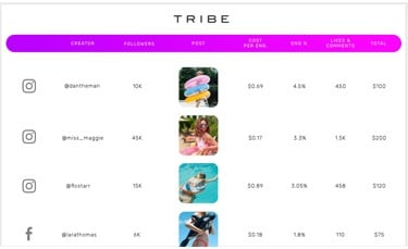TRIBE campaign metrics screenshot